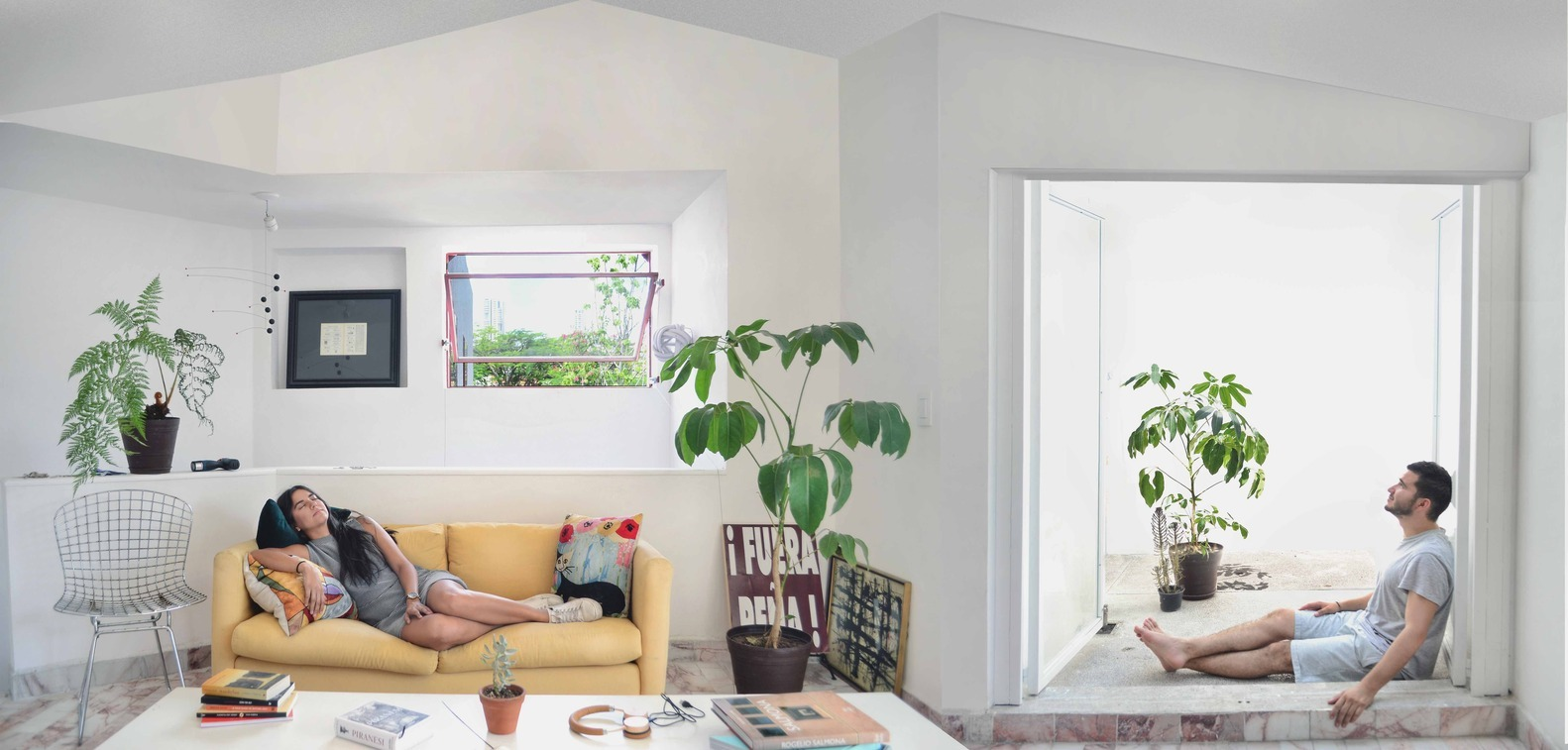 نقش مبلمان و گیاهان خانگی در طراحی داخلی